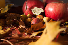 Appel op esdoornbladeren royalty-vrije stock afbeelding