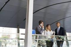 Appel téléphonique d'entretien de femmes d'hommes d'hommes d'affaires Photo stock