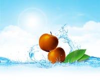 Appel in Water Royalty-vrije Stock Afbeeldingen