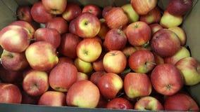 appelen stock foto's