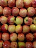 appelen Stock Foto