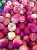 appelen Stock Fotografie