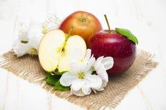 appelen royalty-vrije stock afbeelding