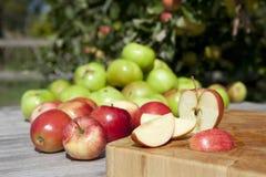 Appelen in boomgaard stock foto