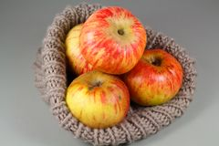 Appelen in een beanie stock afbeelding