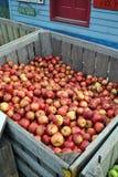 Appelen in een Krat stock afbeelding
