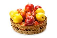 Appelen in een mand worden geschikt die Stock Foto