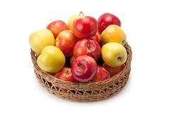 Appelen in een mand worden geschikt die Royalty-vrije Stock Afbeelding
