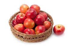 Appelen in een mand worden geschikt die Royalty-vrije Stock Foto