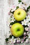 Appelen en de bloesems van de appelboom Royalty-vrije Stock Afbeelding