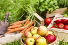 Appelen en groenten Stock Foto's
