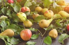 Appelen en peren op donkere houten achtergrond Stock Fotografie