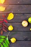 Appelen en peren op een achtergrond royalty-vrije stock foto's