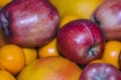 Appelen en Sinaasappelen royalty-vrije stock foto
