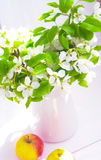 Appelen en witte kruik royalty-vrije stock fotografie