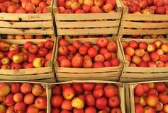 Appelen in het verkopen van kratten op markt Stock Afbeelding