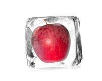 Appelen in ijsblokjes stock fotografie