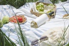 Appelen, koekjes, fles witte wijn, sandwiches, hoed en zonnebril op de deken Picknickconcept op het groene gras stock foto