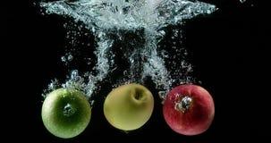 Appelen, malusdomestica die, Vruchten Water ingaan tegen Zwarte Achtergrond, stock footage