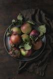 Appelen met bladeren Royalty-vrije Stock Foto