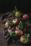 Appelen met bladeren Stock Afbeeldingen