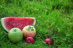 Appelen met pruimen en watermeloen Stock Foto
