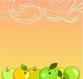 Appelen met zonsopgang Stock Foto