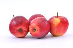 Appelen op een witte achtergrond Stock Afbeeldingen