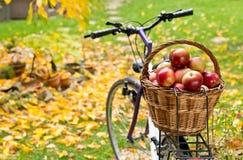 Appelen in rieten mand stock afbeeldingen