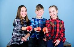 Appelen van de de jonge geitjesgreep van groepstieners de vrolijke Jongen en meisjes de vrienden eten appel Tienerjaren met gezon royalty-vrije stock fotografie