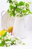 Appelenbloemen en witte kruik Stock Afbeeldingen
