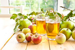 Appelsap en verse appelen royalty-vrije stock afbeelding