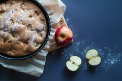 Appeltaart en appelen stock afbeelding