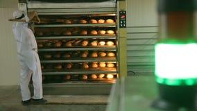 Appena al forno Primo piano dell'uomo che prende il pane al forno fresco dal forno video d archivio