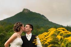 Appena baciare della coppia sposata fotografia stock