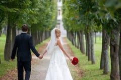 Appena coppia sposata che cammina giù la strada panoramica Fotografia Stock