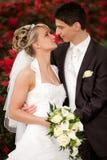 Appena la coppia sposata vuole i baci Fotografia Stock