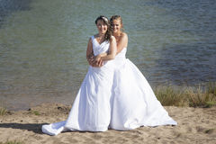 Appena le coppie lesbiche felici sposate in vestito bianco abbracciano vicino a MP Fotografia Stock
