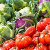Appena pomodori raccolti da vendere al mercato locale dell'azienda agricola Copenhaghen, Danimarca Immagine Stock