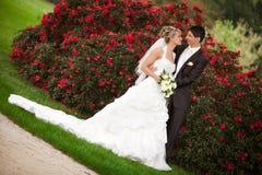 Appena sguardo della coppia sposata Immagini Stock