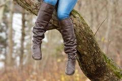 Appendendo in un albero Fotografia Stock