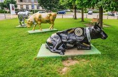 Appenzell, Suíça - 19 de junho de 2012: Vacas de Appenzeller na frente do museu de Appenzeller Volkskunde, caneco de cerveja, App imagem de stock