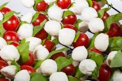 appetisers behandla som ett barn mozzarellaen med körsbärsröda tomater Fotografering för Bildbyråer