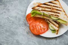 Appetising hot sandwitch with bacon and tomato. Copy space stock photography