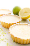 Appetising lemon tarts. Delicious looking lemon tarts with lime zest and a cut lemon stock photos