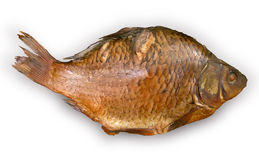 Appetitanregende Fische Stockbilder