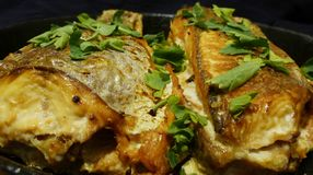 Appetitanregende Fische stockfoto