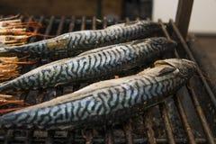 Appetitanregende Makrele gegrillt auf einer Festnahrung steet Lebensmittel stockfotos