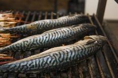 Appetitanregende Makrele gegrillt auf einer Festnahrung steet Lebensmittel lizenzfreie stockfotos