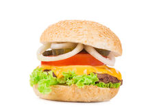 Appetitanregender Hamburger Lizenzfreies Stockfoto